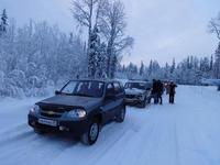 Ненокса и Куртяево Январь 2015