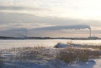 Панорама ТЭЦ 1 и 2